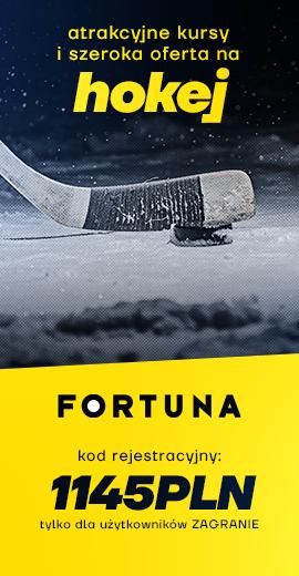 Hokejowy baner na Fortunę