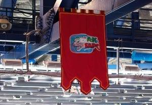 Flaga i logo Bars Kazań