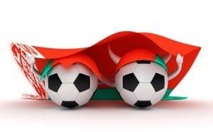 Piłki w barwach Białorusi