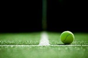 tenis trawa
