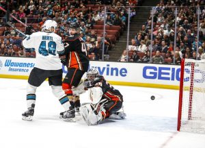 8.07 NHL foto_