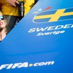 Kibic Szwecja